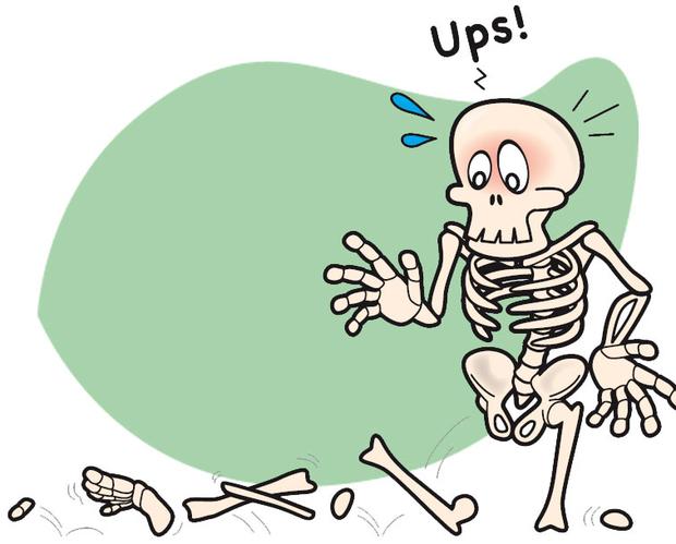 Was sind Knochen denn genau? | Klinikum Esslingen